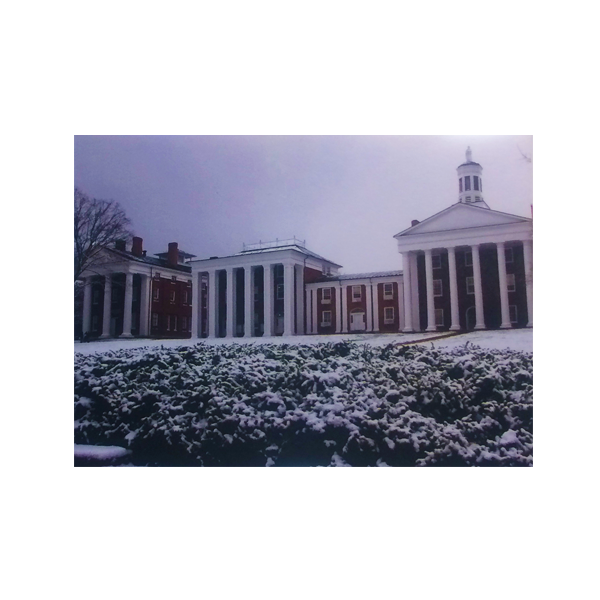 Winter Colonnade Note Card