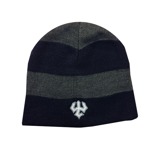 Legacy Navy and Grey Stripe Beanie