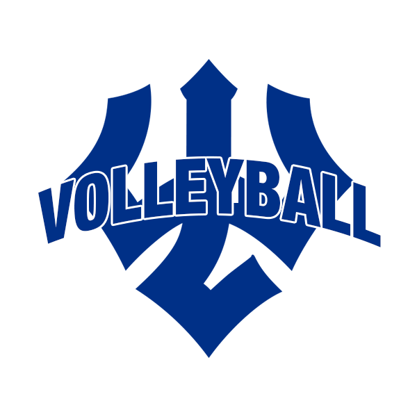 Cover Image For Volleyball Decal