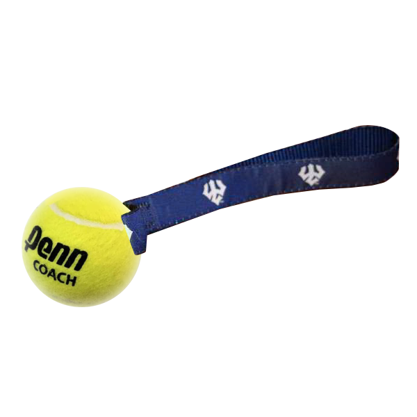 Cover Image For Tennis Ball Dog Toy