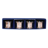 Cover Image for Salisbury Pewter Napkin Ring Set, Trident