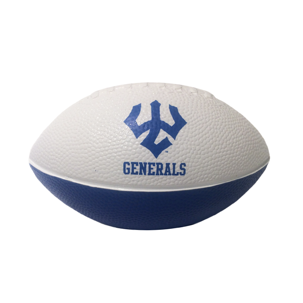 Image For Nerf Small Football