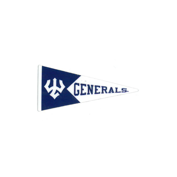Image For Dizzler Pennant Decal
