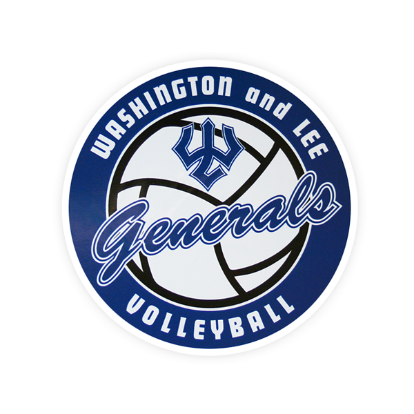 Image For Dizzler Volleyball Decal, Small