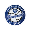 Cover Image for Dizzler Volleyball Decal, Small