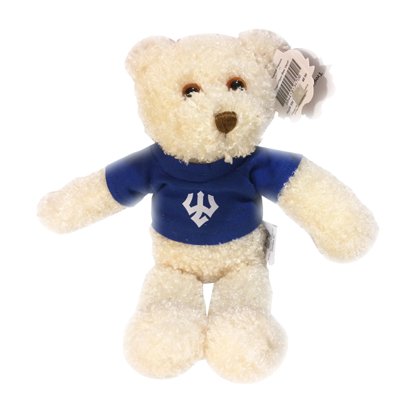 Image For Bear Plush