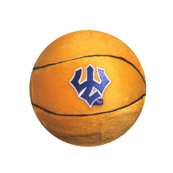 Image For Basketball Plush