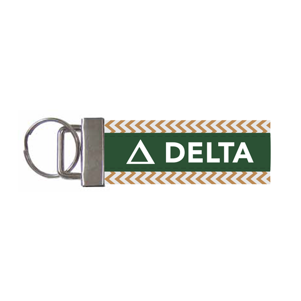 Image For Delta Key Fob