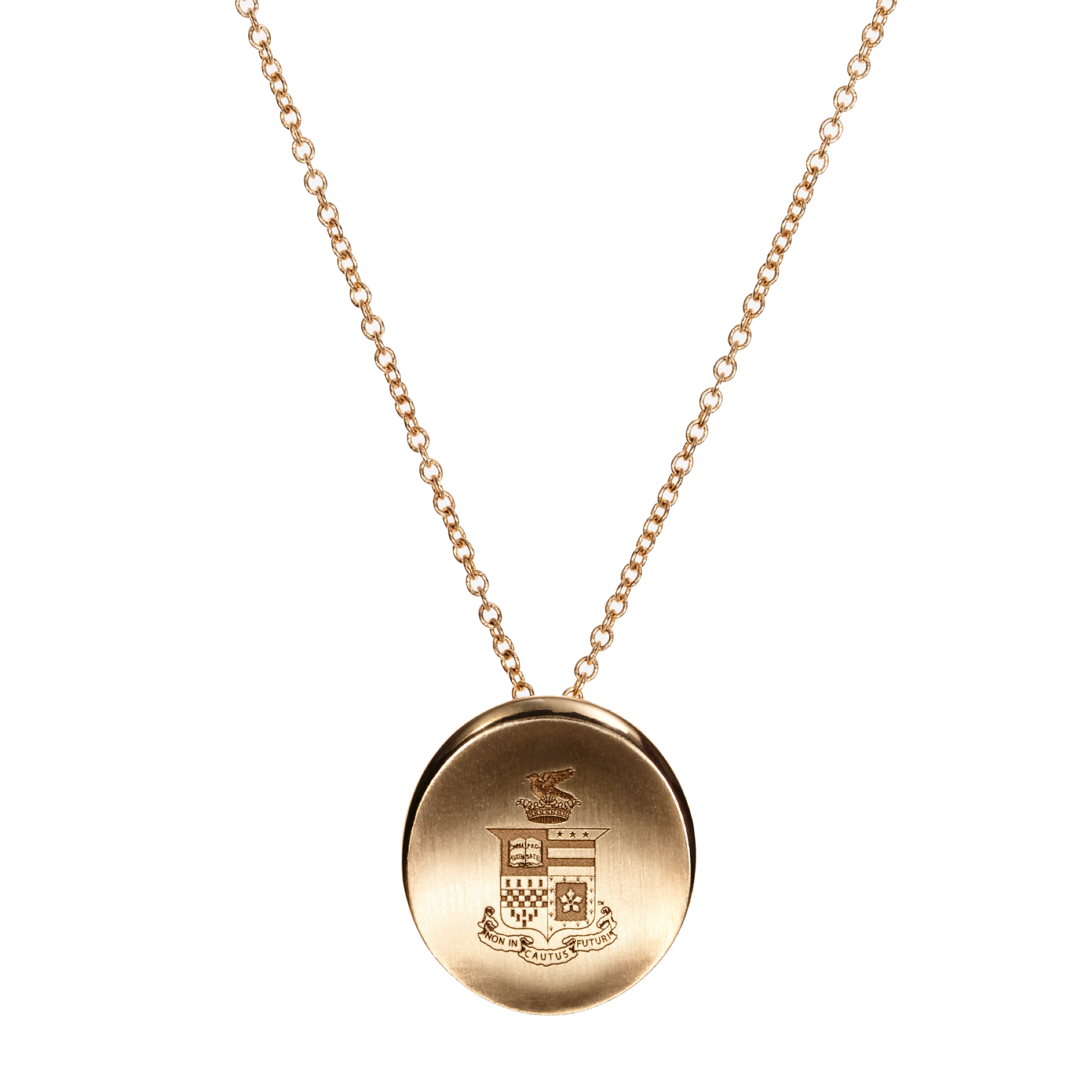 Image For Kyle Cavan Organic Crest Necklace, Gold