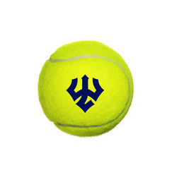 Image For Trident Tennis Ball, Case of 24 Cans