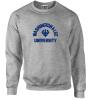 Cover Image for Pro-Weave Graphite Crew Sweatshirt