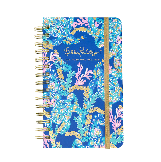 Image For Lilly Pulitzer Turtle Villa Planner, Medium