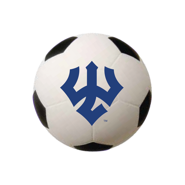 Image For Mini Soccer Ball